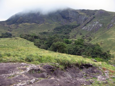 Rajamala/ Eravikulam National Park