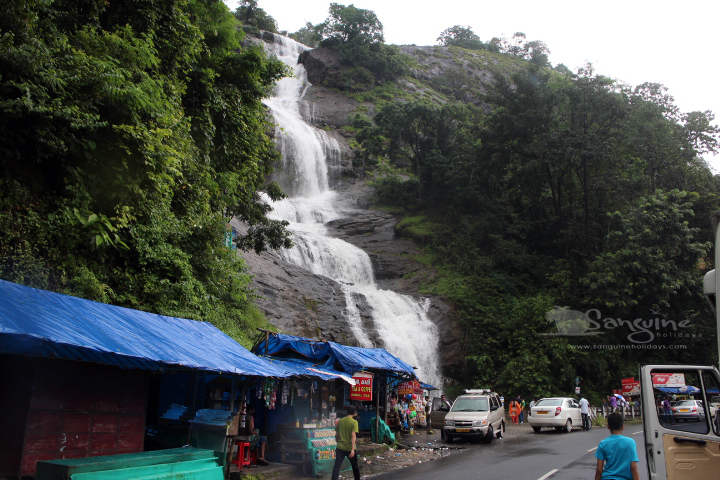 Cheeyappara Waterfalls Near Munnar